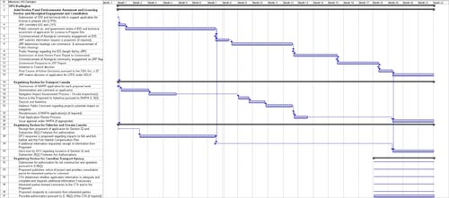 A Gantt chart that is a visual representation of the milestones and service standards in Annex II and Annex IV